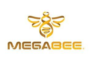 Mega Bee Logo