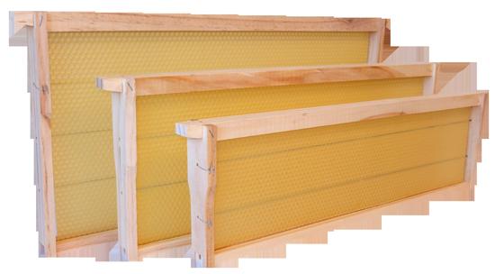 New-Zealand-Beeswax-Ltd-Total-Frames