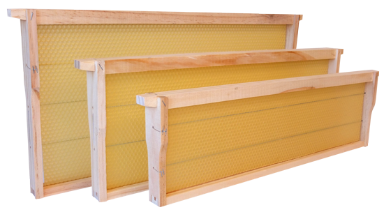 New-Zealand-Beeswax-Ltd-Total-Frames
